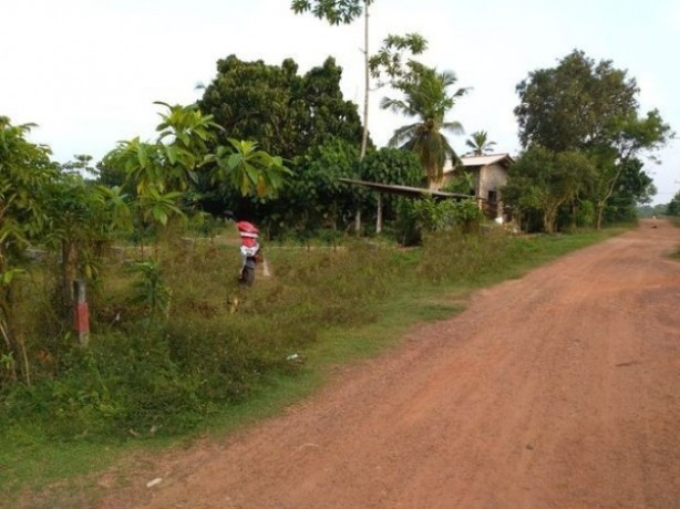 Land For Sale Kalutara