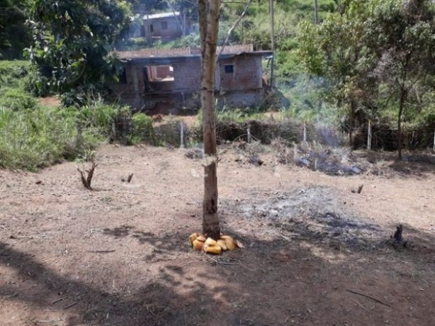 Land For Sale In Digana