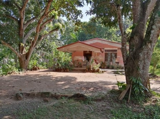 House For Sale In Moneragala