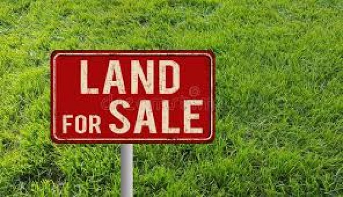 Land For Sale In Naiwala