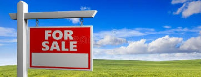 Land For Sale In Tambuttegama
