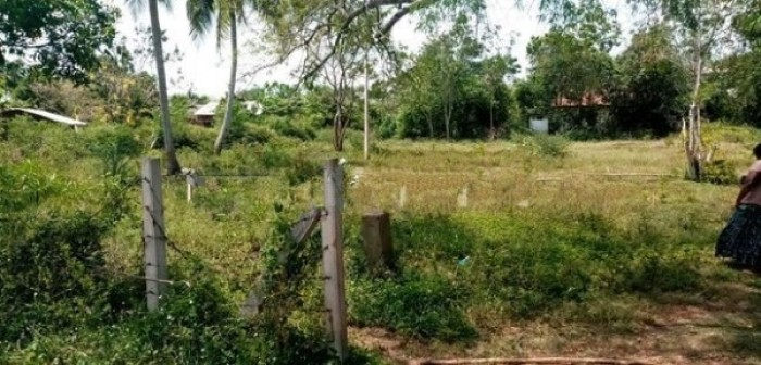 Land For Sale In Hungama